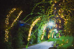 парк зелень гирлянда