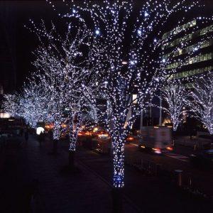 деревья новогодняя иллюминация